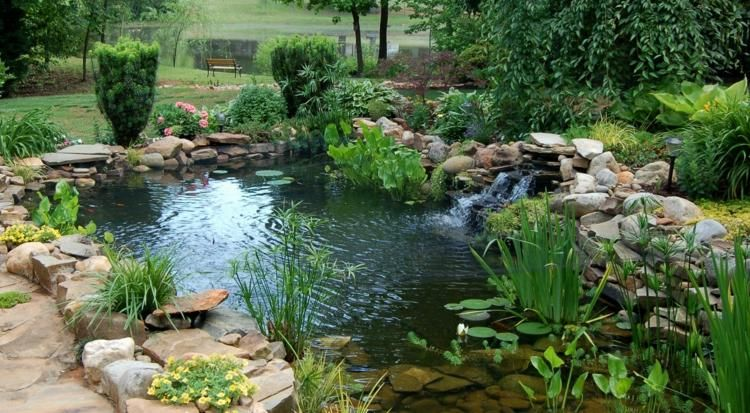 Comment bien installer un bassin aquatique ?