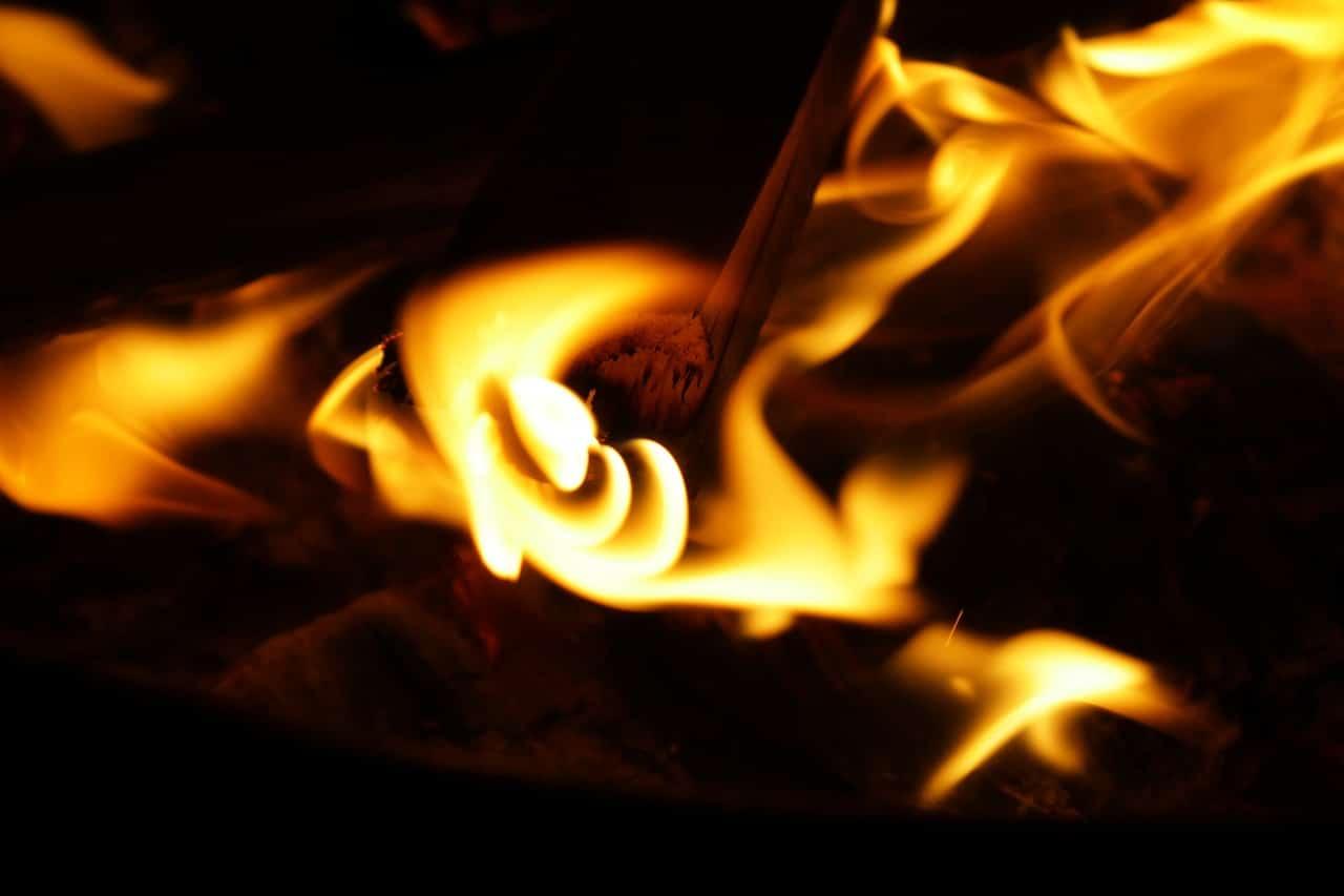 Bûches, granulés, plaquettes, quelle énergie bois est la plus performante ?